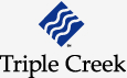 Triple Creek Recognized for Best Advances in Social Learning by  Brandon Hall Group