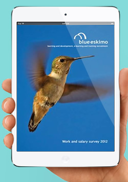 The salary and work survey can be downloaded free