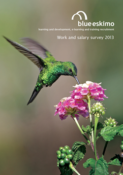 Blue Eskimo salary survey 2013