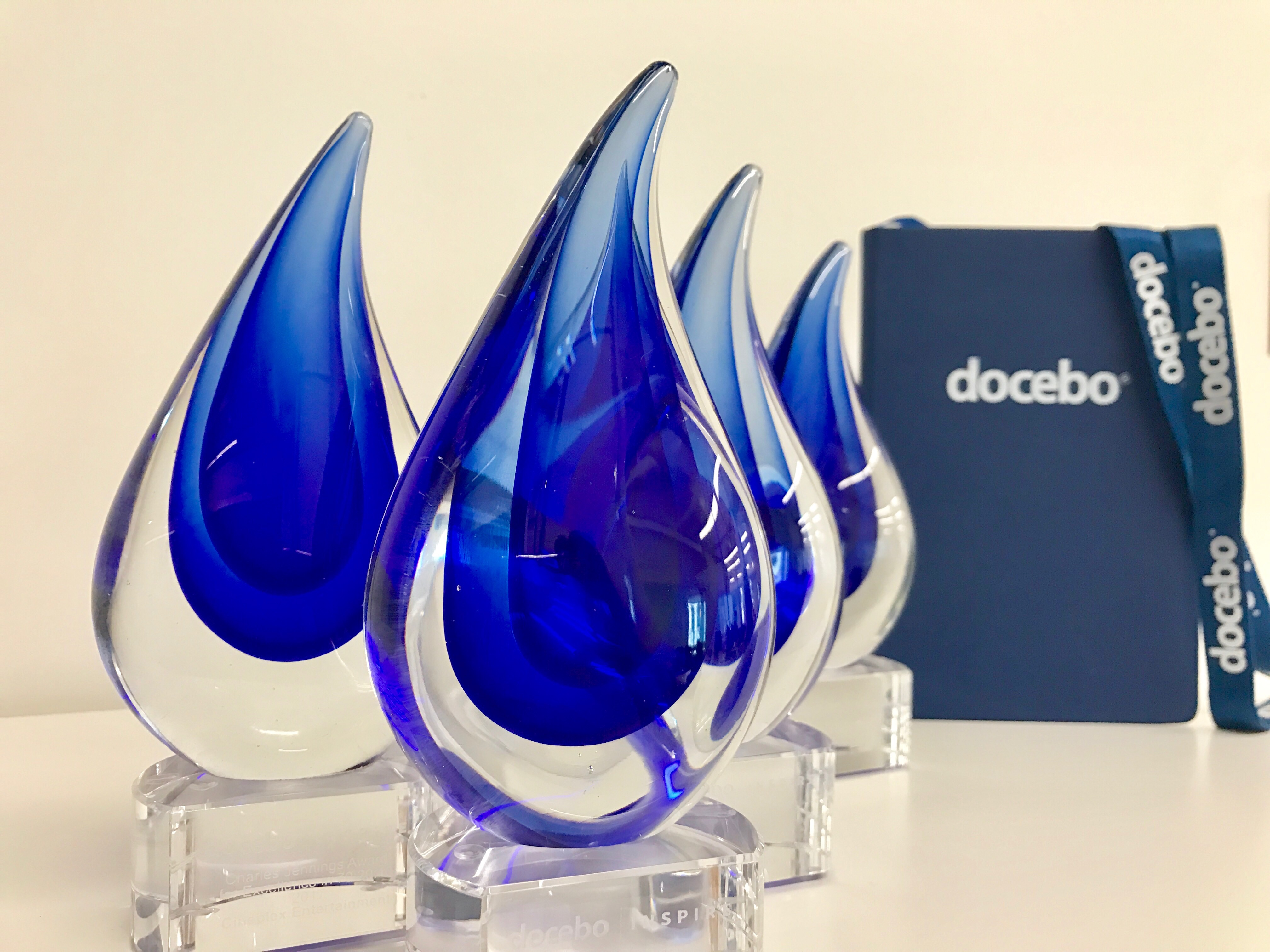 The 2017 Docebo Learning Awards recognized achievements in five categories.